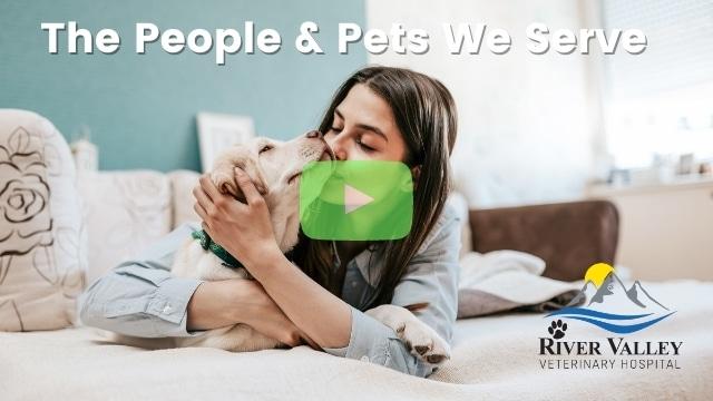Emergency Vet Springdale | The People & Pets We Serve Thumb